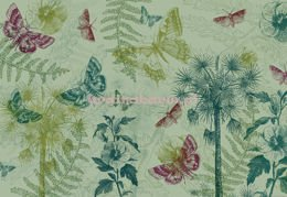 Fototapeta 5176 Butterfly and Plants Collage