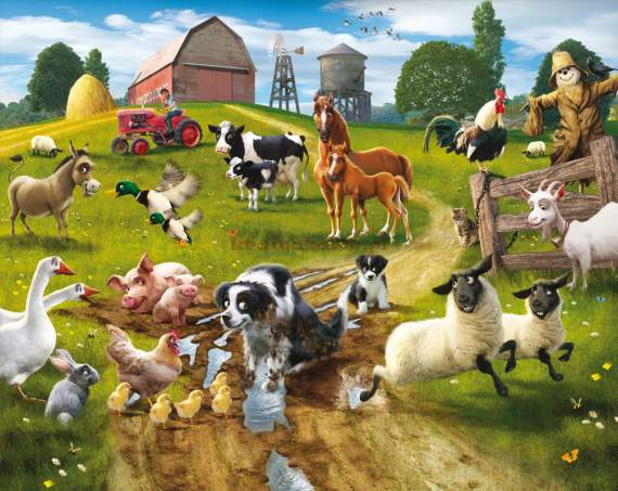 Fototapeta 3D 032 Farmyard Fun